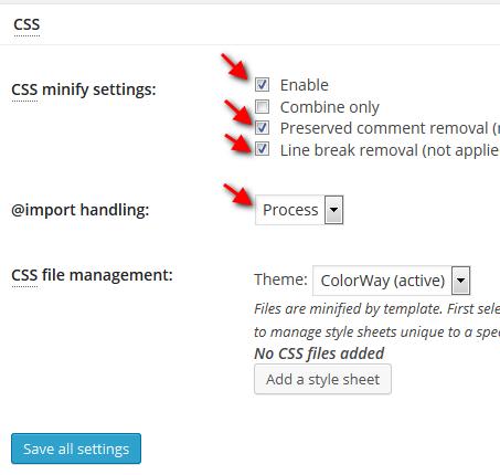 W3 Minify Setting CSS